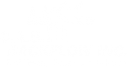 CAB logo white